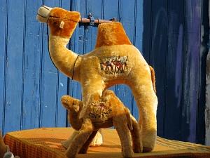 les chameaux... qui sont des dromadaires