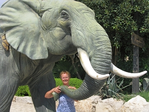 lita et l'éléphant